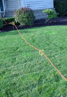 Yardsticks Holding a Carpet Cleaning Solution Hose Across a Lawn